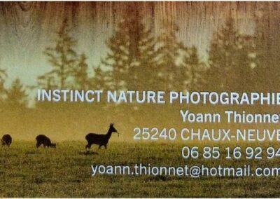 Coup de cœur : une sortie avec Instinct Nature Photographie